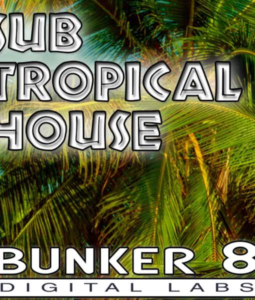 sub-tropical-house